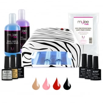 Gel Polish Kit With 4 Colours and Nail Dryer